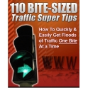 ebook 110 conseils seo traffic